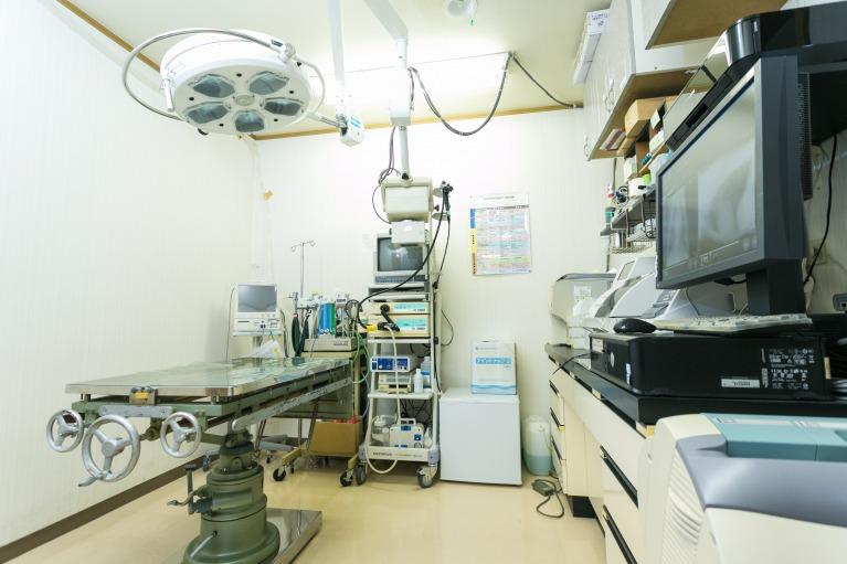 八木山サンシャイン動物病院で手術をするメリット